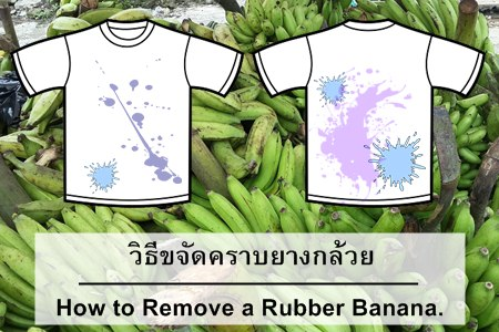 ยางกล้วยติดเสื้อ