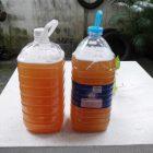 สูตรน้ำหมักชีวภาพ และการทำน้ำหมักไล่แมลง 7 สูตรง่ายๆ