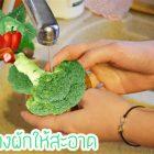 12 วิธีล้างผักผลไม้ ให้สะอาดปลอดภัย ไร้สารพิษตกค้าง ด้วยเทคนิคง่ายๆ
