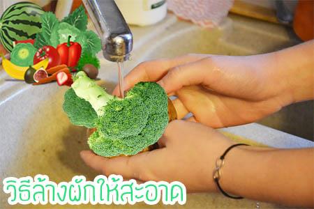 วิธีล้างผักให้สะอาด