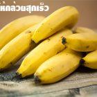 6 วิธีทําให้กล้วยสุกเร็ว ทำง่ายมาก เร่งให้กล้วยสุกเร็วเพียงไม่กี่วัน