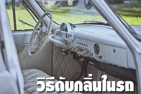 วิธีดับกลิ่นในรถ